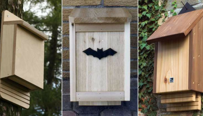 Bat box rimedio contro le zanzare